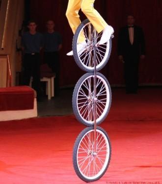 Цирковые номера